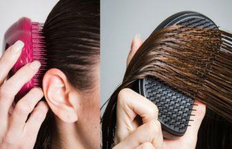 【美容師が解説】ヘアケアブラシ「タングルティーザー」の効果とは?種類を解説