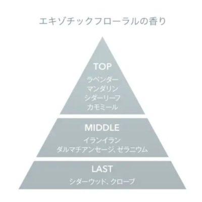 Moii(モイ) オイル レディアブソリュート 香りピラミッド