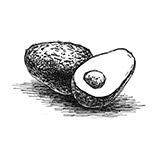 アボカドオイル(アボカド油)